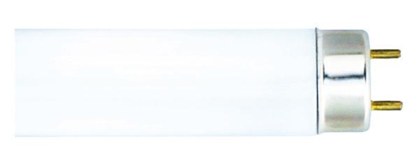 Изображение 1300140 T8 30W-лампа люминесцентная